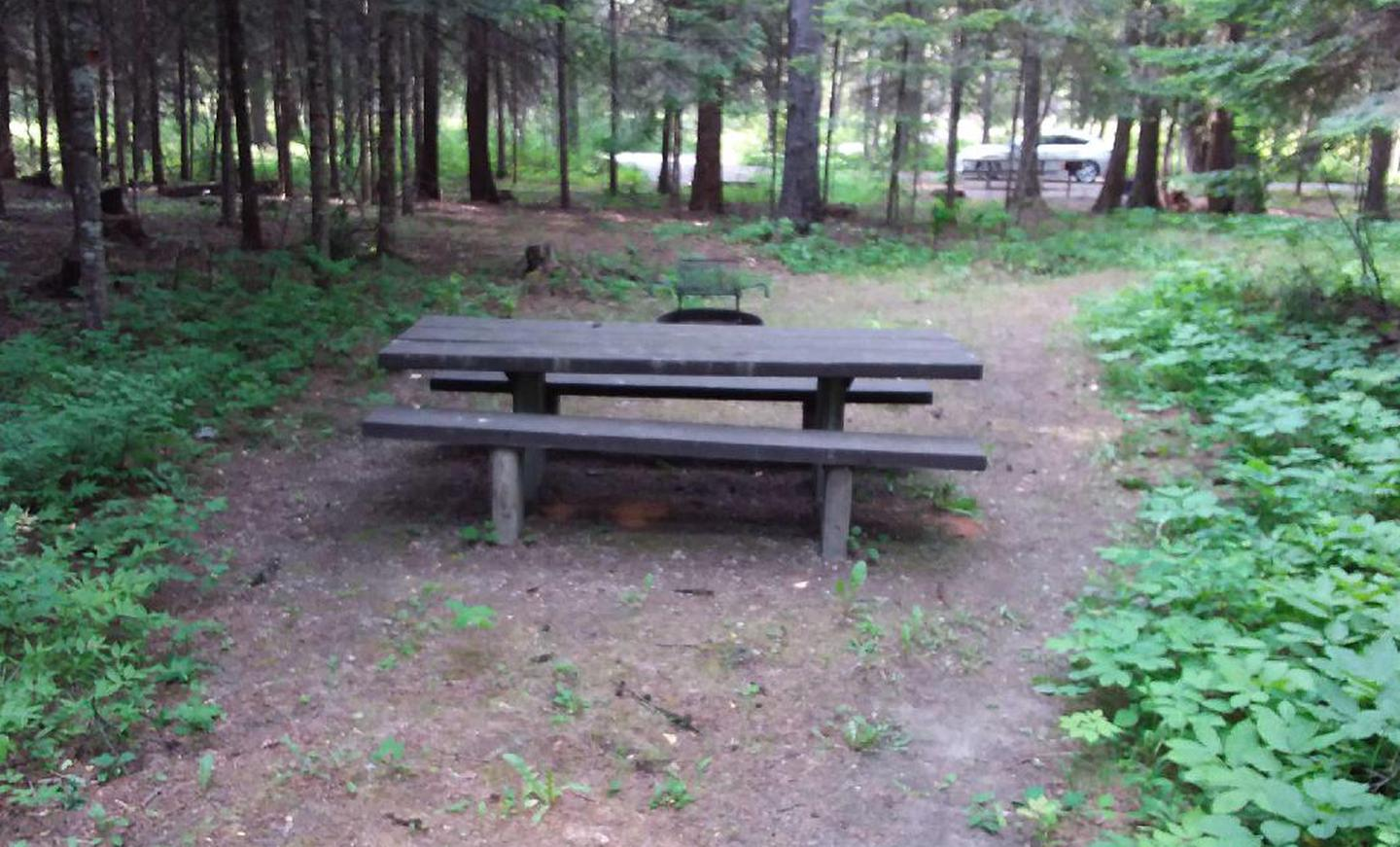 Yaak River Site 3-picnic table