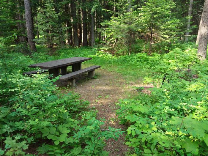 Yaak River Site 5 - picnic table