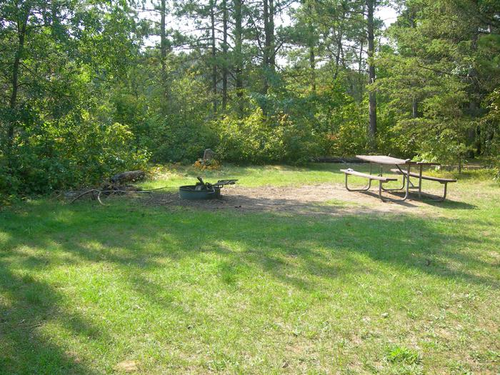 Eagles Nest CampsiteCampsites include a picnic table, fire ring, and a pit toilet.