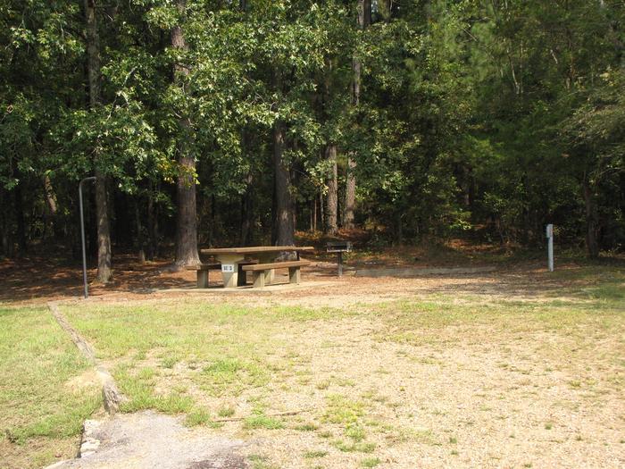 Self Creek Campsite # 3
