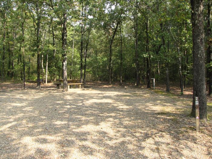 Campsite # 2Self Creek Campsite # 2