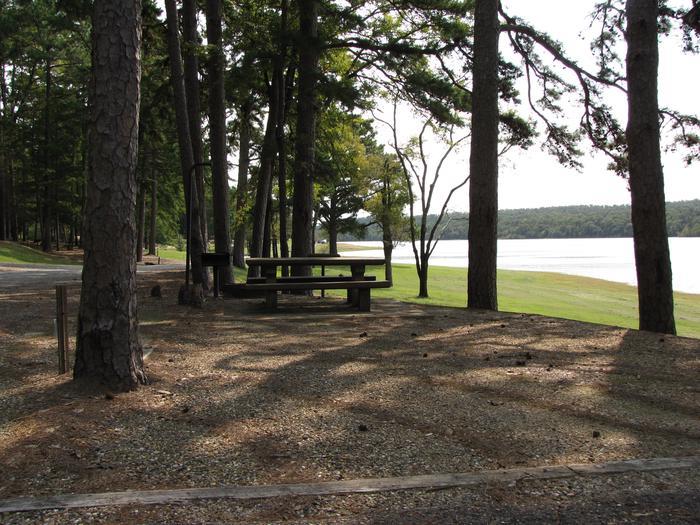 Campsite # 6Self Creek campsite # 6