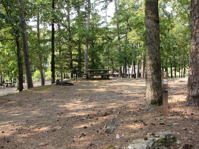 Campsite # 7Self Creek campsite # 7