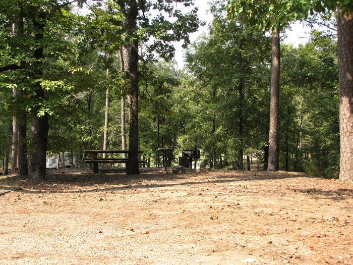 Campsite # 8Self Creek campsite # 8
