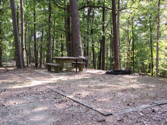 Campsite # 10Self Creek campsite # 10