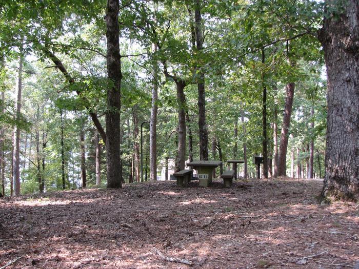 Campsite # 11Self Creek campsite # 11
