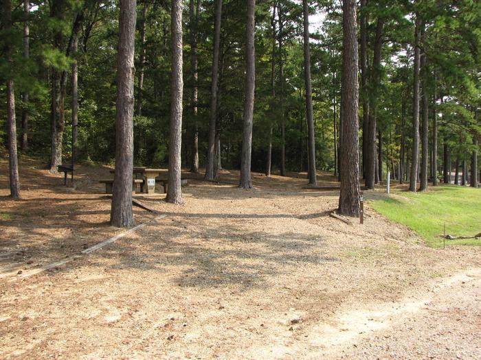 Campsite # 13Self Creek campsite # 13