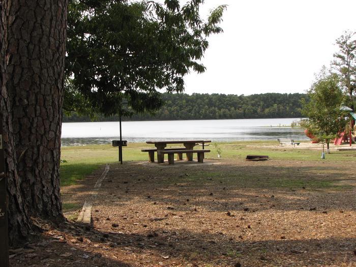 Campsite # 17Self Creek campsite # 17