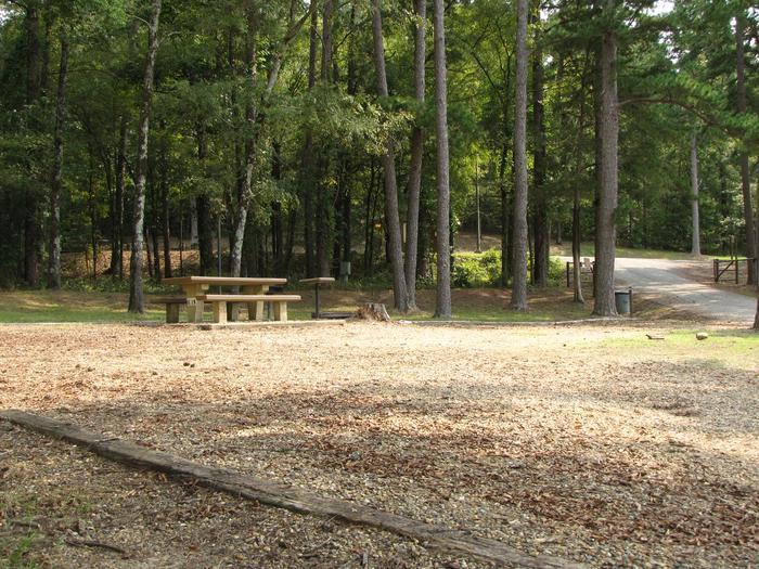 Campsite # 19Self Creek campsite # 19