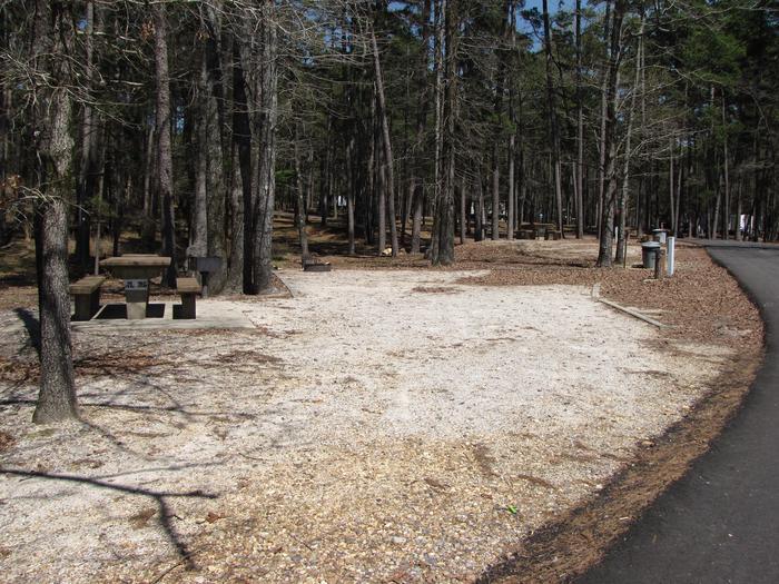 Campsite  # 36Kirby Landing campsite # 36