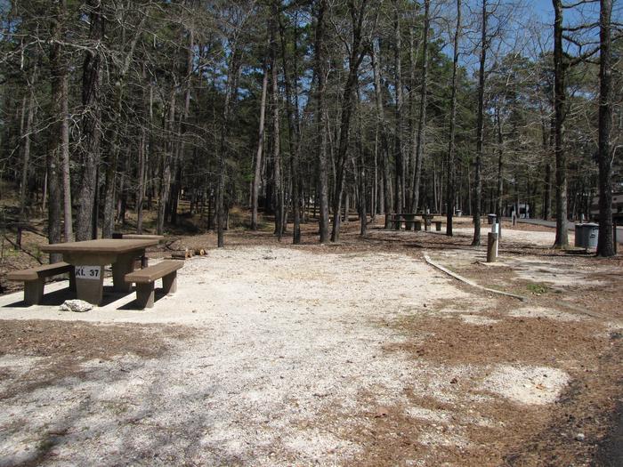 Campsite # 37Kirby Landing campsite # 37