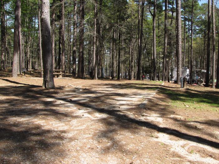 Campsite # 71Kirby Landing campsite # 71