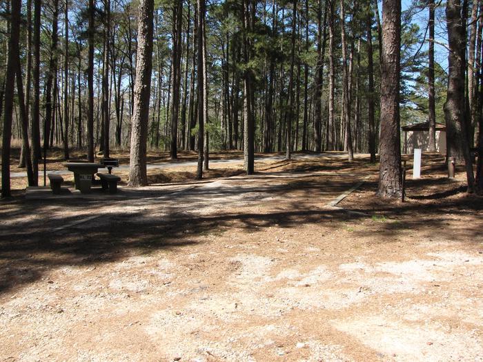 Campsite # 72Kirby Landing campsite # 72