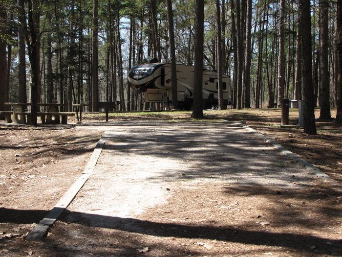 Campsite # 77Kirby Landing campsite # 77
