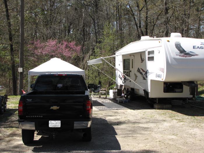 Campsite # 85Kirby Landing campsite # 85