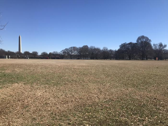 The image shows an open grassy area with trees and the Washington Monument in the background.Field M4