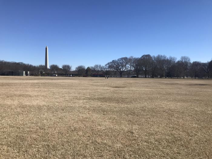 The image shows an open grassy area with trees and the Washington Monument in the background.Field M5