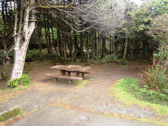 D032View of picnic table and small tent area