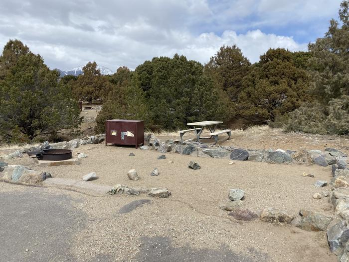 Close-up view of site #87 showing tent pad, fire ring, bear box, picnic table and trees in background.Site 87, Pinon Flats Campground