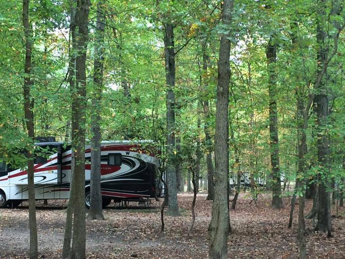 Recreational Vehicle in the D Loop in the Greenbelt Park campground