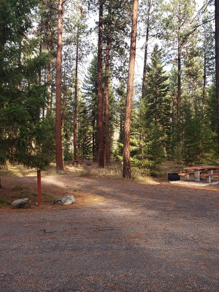 Loop A , Site 6