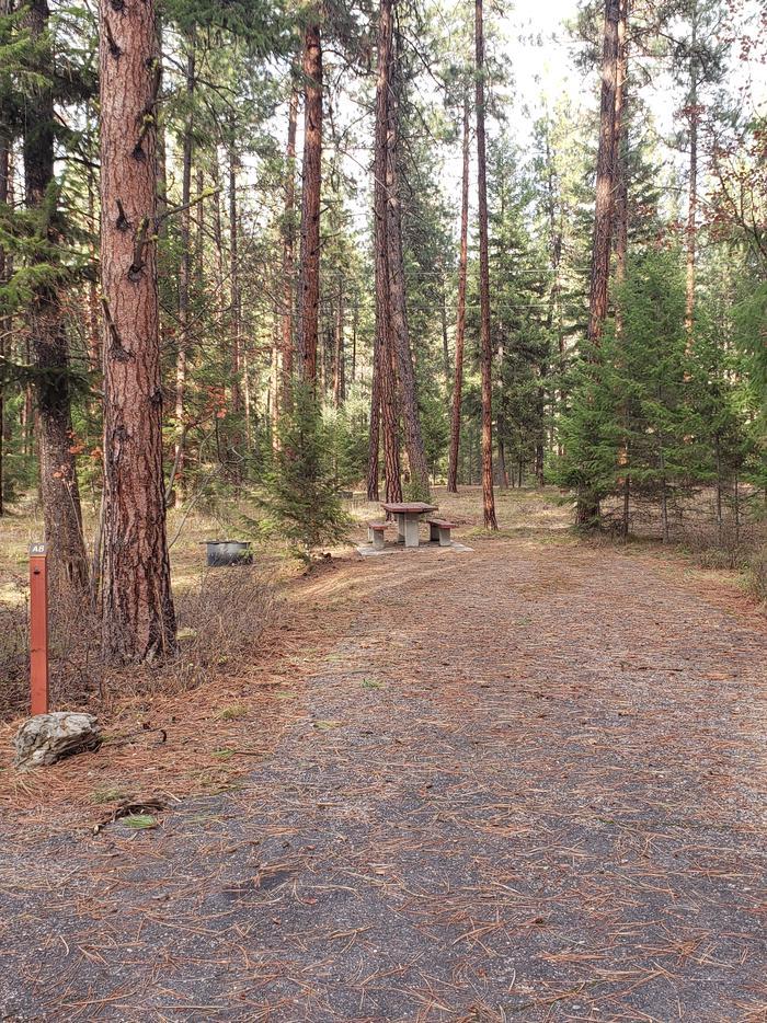Loop A , Site 8
