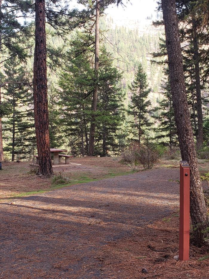 Loop A , Site 20