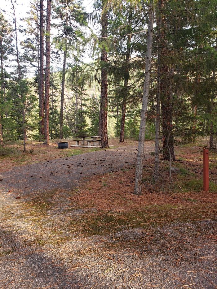Loop A , Site 24