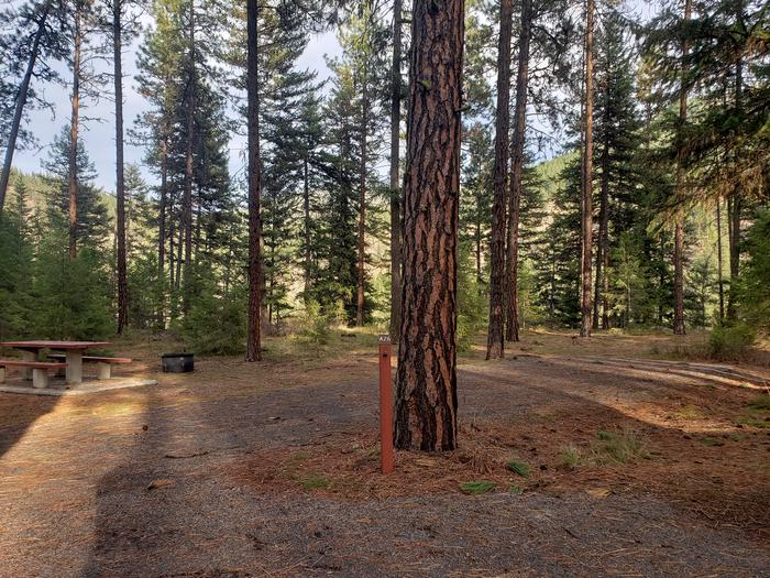 Loop A , Site 26