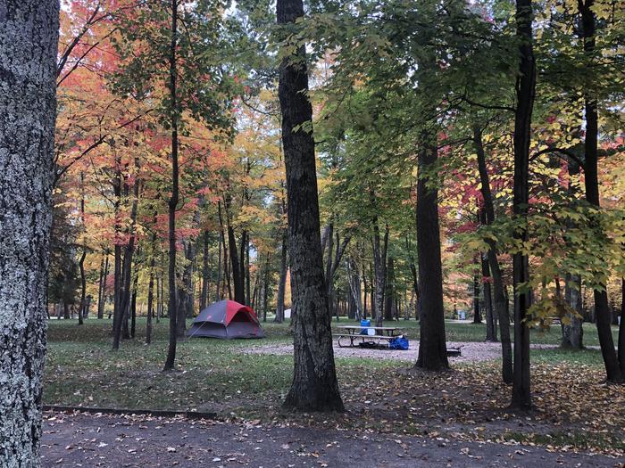 Winnie Dam Campground FallWinnie Dam Campground