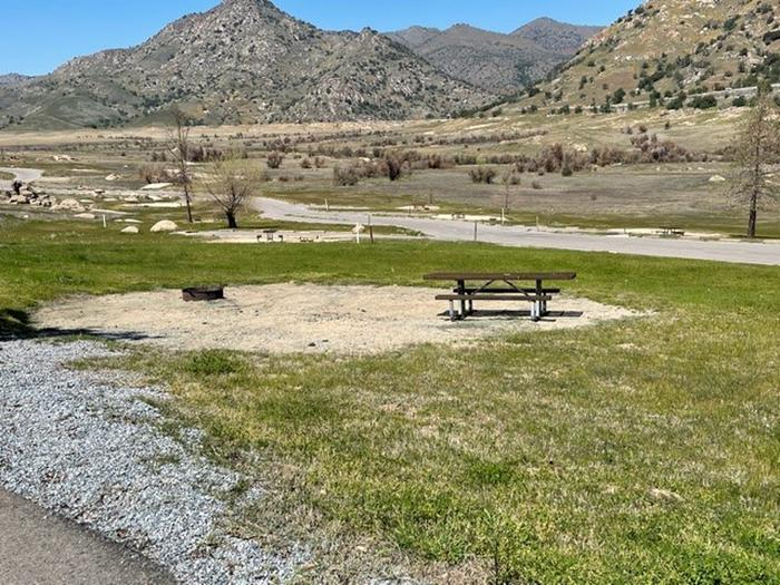 Picnic area at sitePicnic table and fire ring.