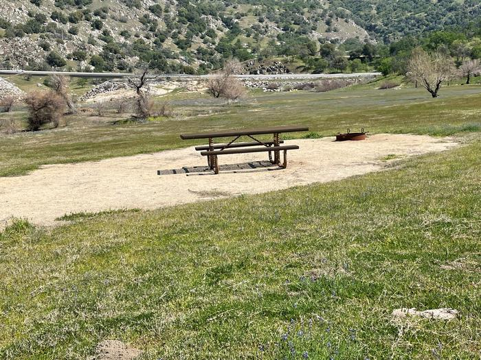 Campsite area.Picnic table and fire ring at campsite. No shade available at site.