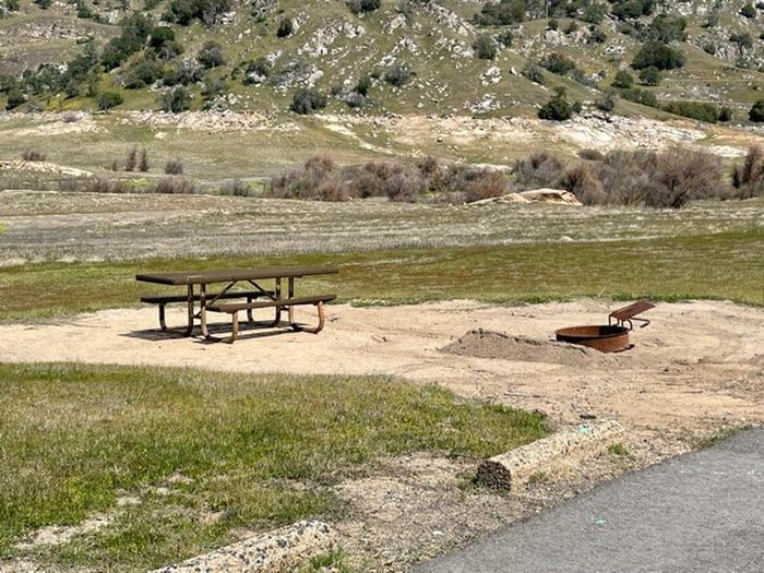 Site area.Picnic table and fire ring at site.