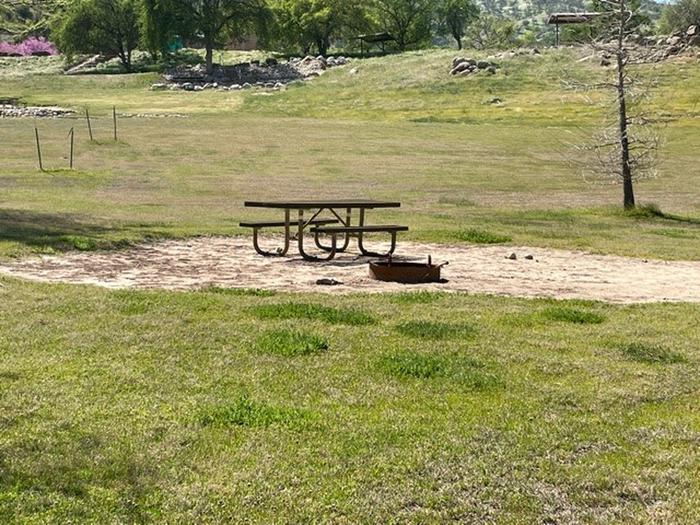 Site area.Picnic table and fire ring for site.