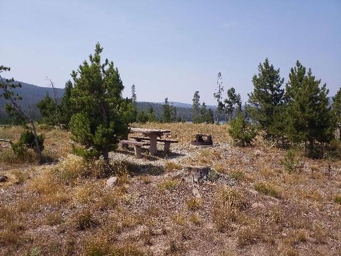 Hog Park Campsite 2 Photo 1