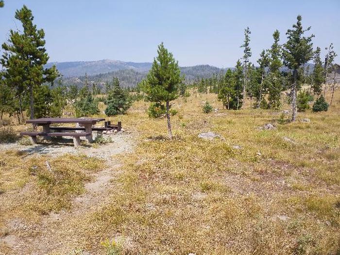 Hog Park Campsite 4 Photo 1