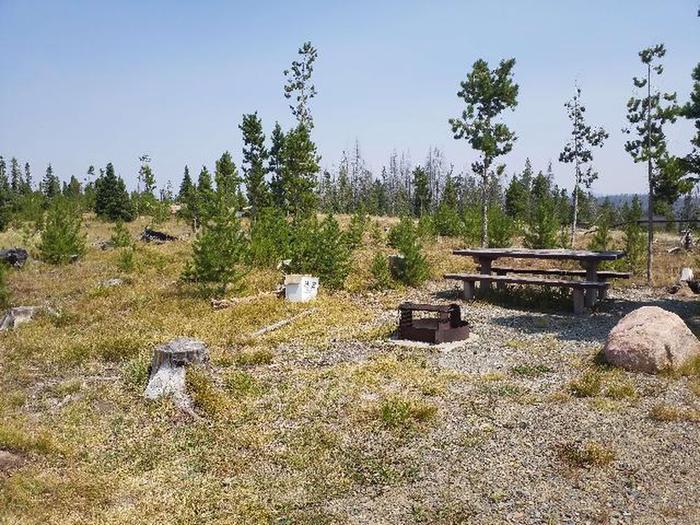 Hog Park Campground Site 8 Photo 1