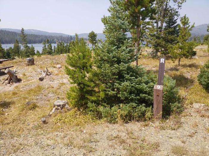 Hog Park Campground Site 9 Photo 3