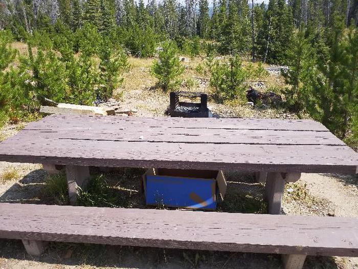 Hog Park Campground Site 14 Photo 1