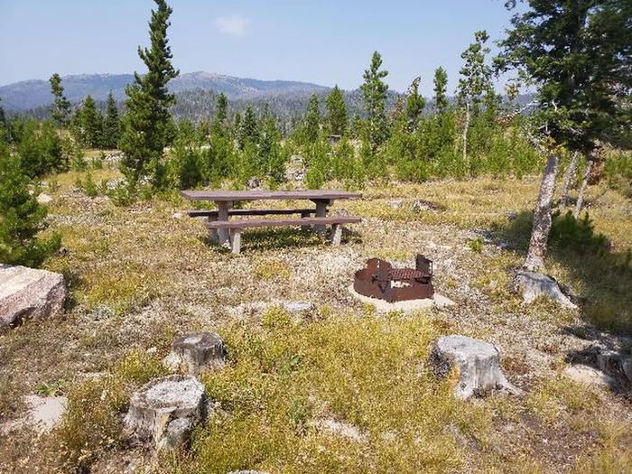 Hog Park Campground Site 22 Photo 1
