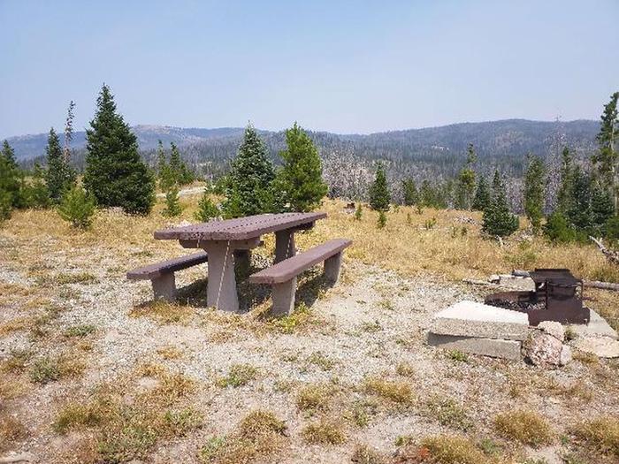 Hog Park Campground Site 26 Photo 1