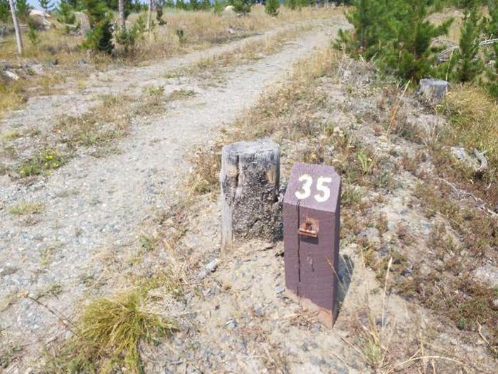 Hog Park Campground Site 35 Photo 3
