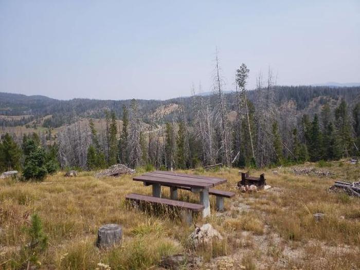 Hog Park Campground Site 37 Photo 1