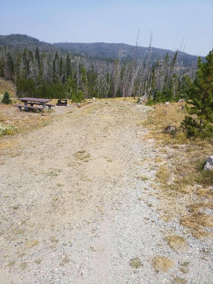 Hog Park Campground Site 38 Photo 2