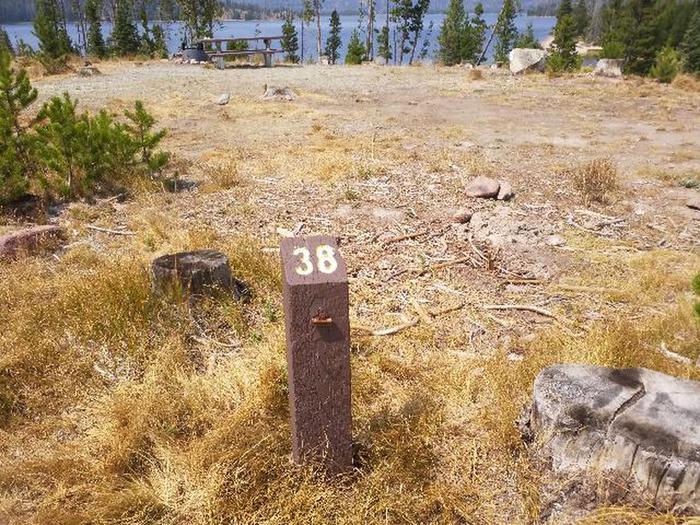 Hog Park Campground Site 38 Photo 3