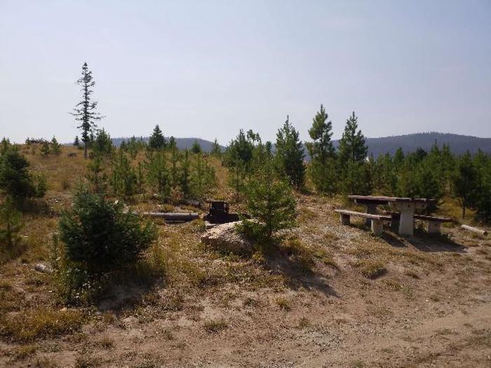 Hog Park Campground Site 41 Photo 1