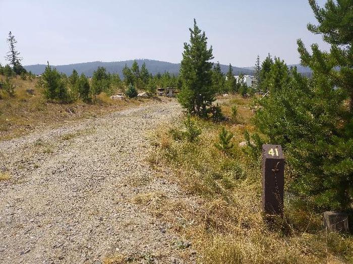 Hog Park Campground Site 41 Photo 3