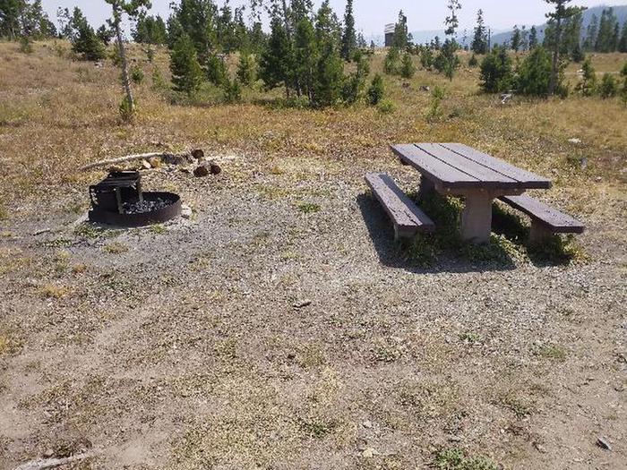 Hog Park Campground Site 47 Photo 1
