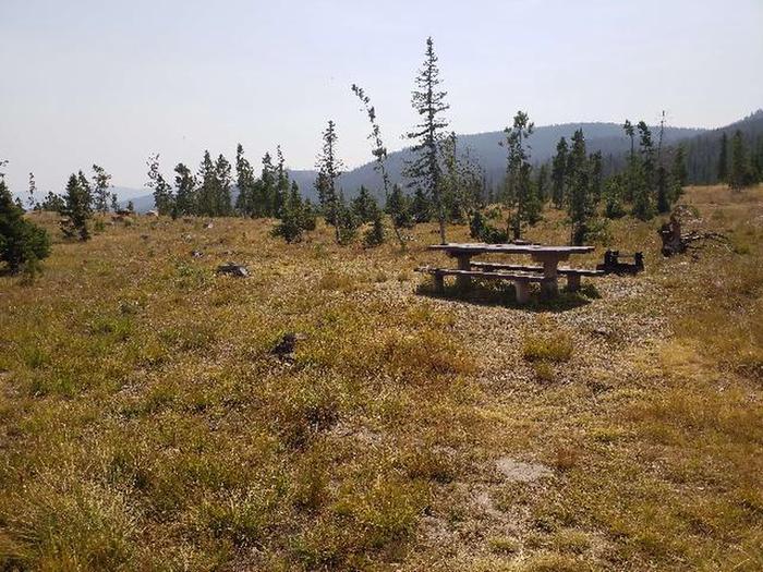 Hog Park Campground Site 48 Photo 1