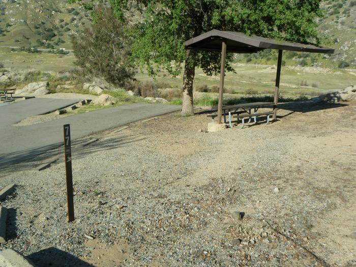 Campsite on hill with slight grade on site. Back in parking pad with slight gradeMultiple use campsite. Parking pad shares entrance with campsite 78. One small RV or other type vehicle will keep entrance open to both sites. Small tent or family tent for 8.